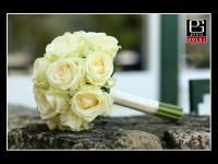 Kytička ruže