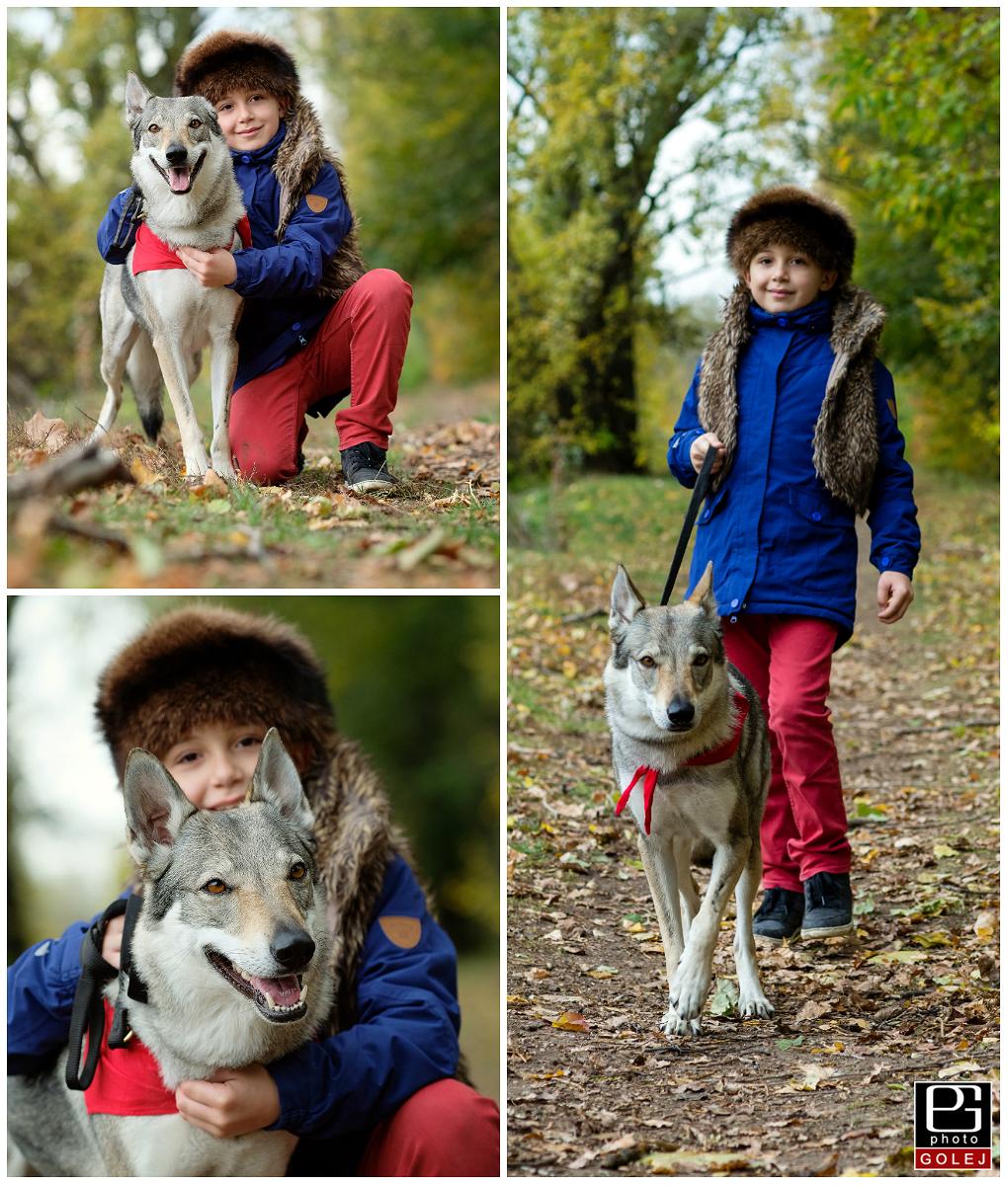 Vlk fotky